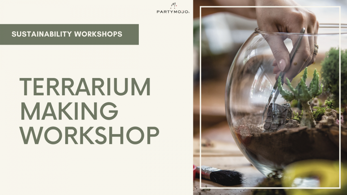 virtual terrarium making workshop